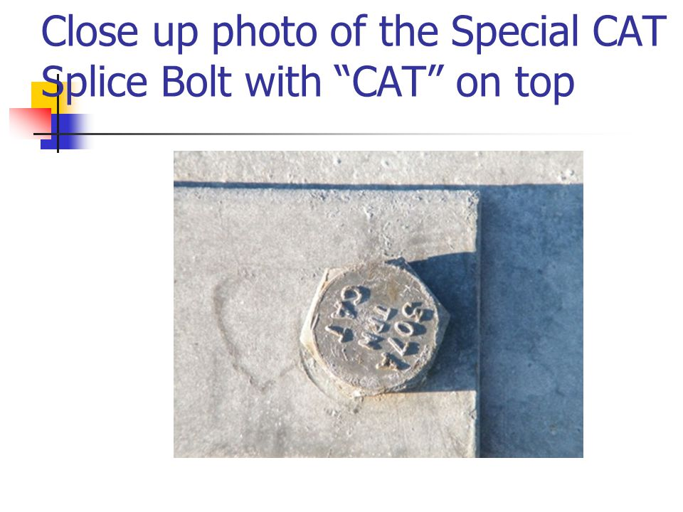 Close up photo of the Special CAT Splice Bolt with CAT on top