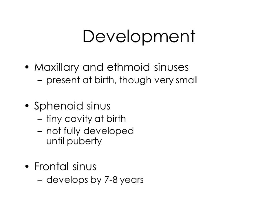 Development Maxillary and ethmoid sinuses Sphenoid sinus Frontal sinus
