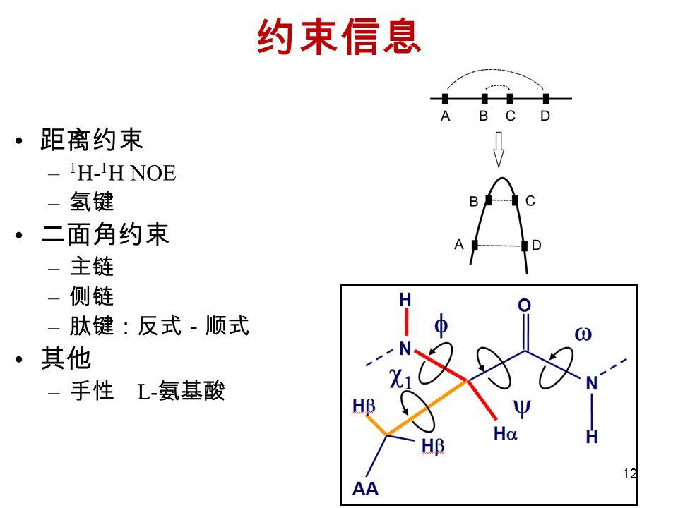 约束信息 距离约束 1H-1H NOE 氢键 二面角约束 主链 侧链 肽键:反式-顺式 其他 手性 L-氨基酸