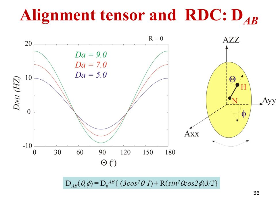 Alignment tensor and RDC: DAB
