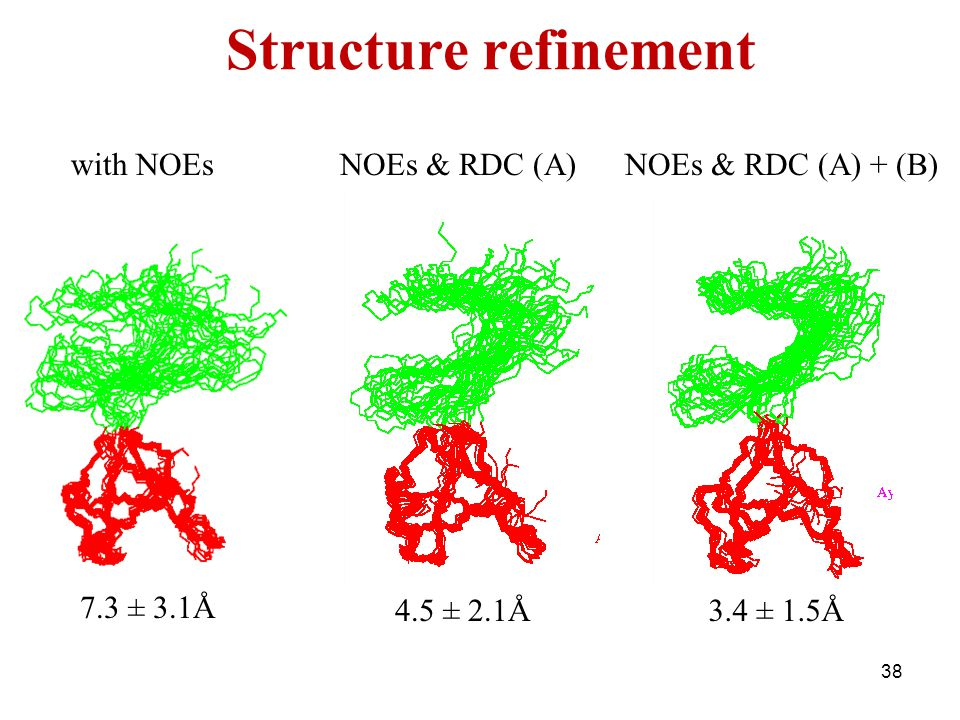 Structure refinement with NOEs NOEs & RDC (A) NOEs & RDC (A) + (B)