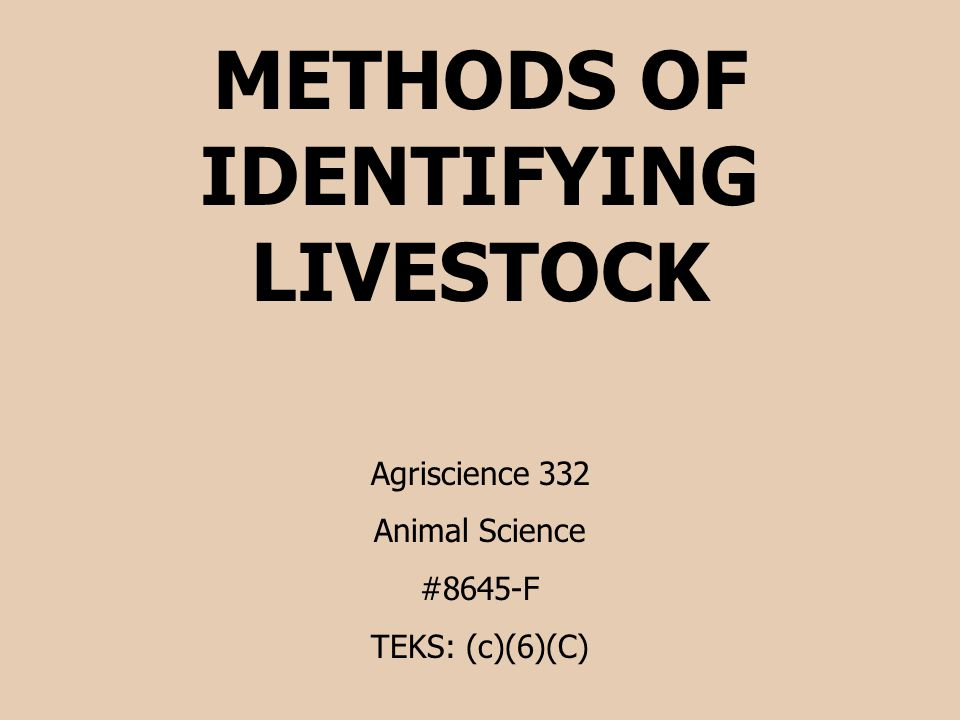 METHODS OF IDENTIFYING LIVESTOCK