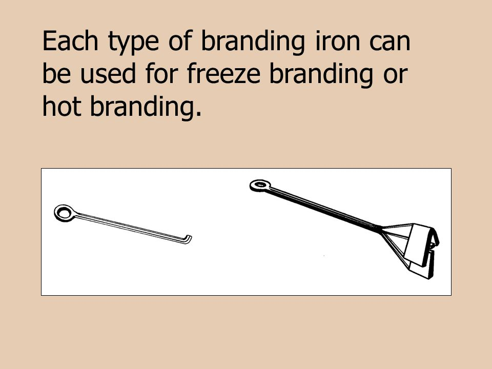 Each type of branding iron can be used for freeze branding or hot branding.
