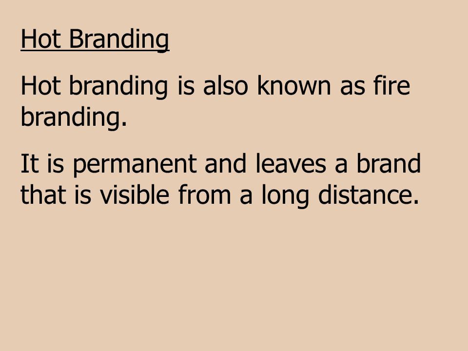 Hot Branding Hot branding is also known as fire branding.