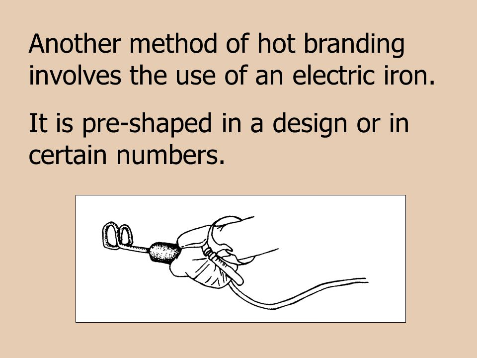 Another method of hot branding involves the use of an electric iron.