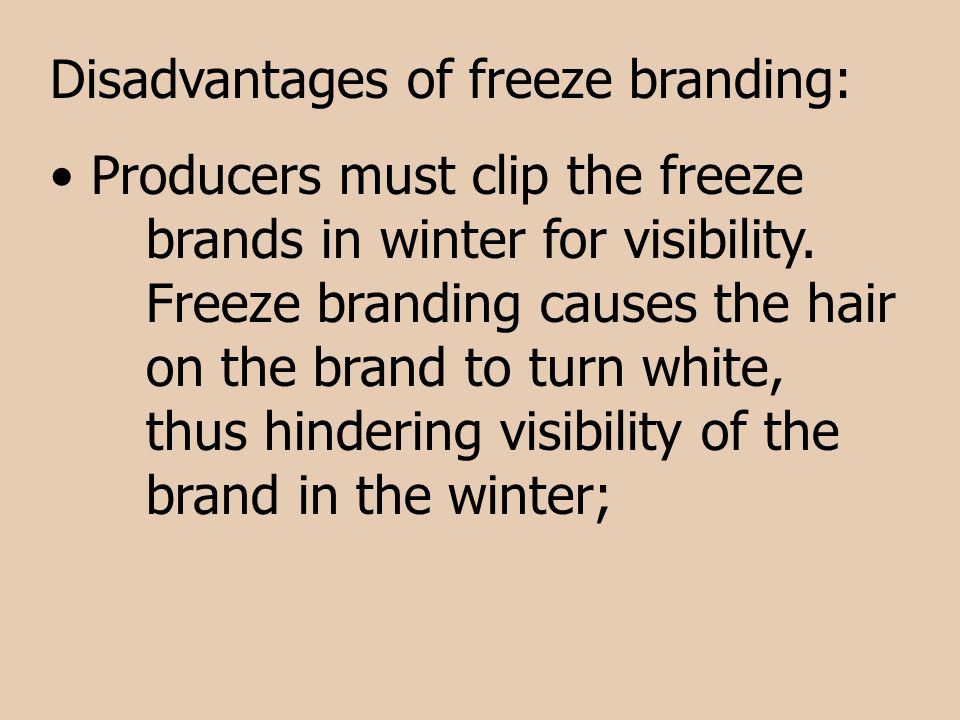 Disadvantages of freeze branding: