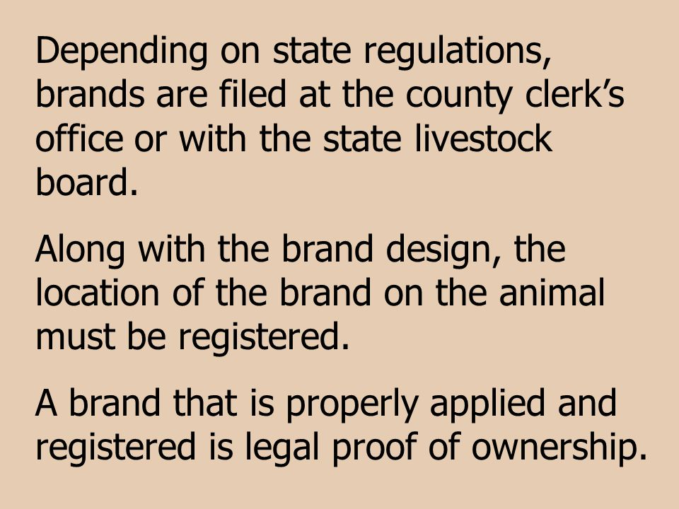 Depending on state regulations, brands are filed at the county clerk's office or with the state livestock board.