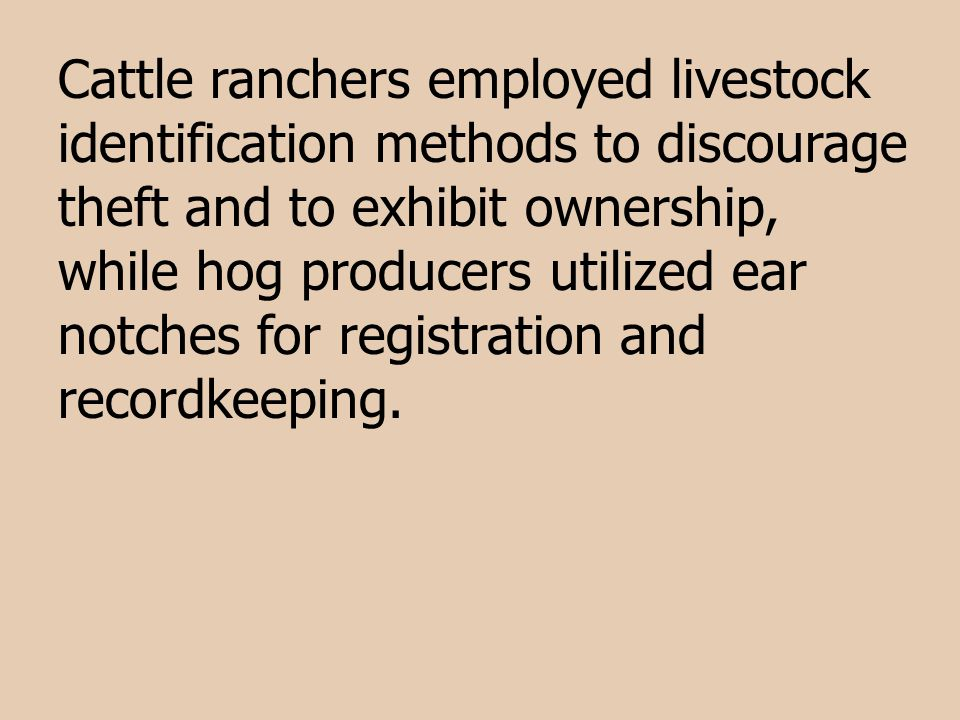 Cattle ranchers employed livestock identification methods to discourage theft and to exhibit ownership, while hog producers utilized ear notches for registration and recordkeeping.