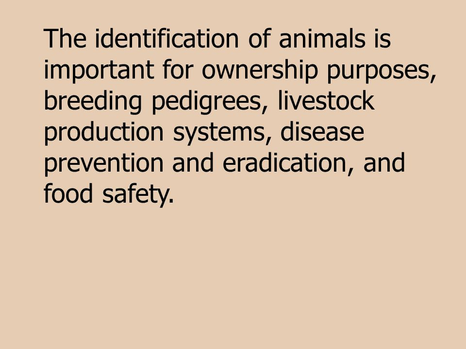 The identification of animals is important for ownership purposes, breeding pedigrees, livestock production systems, disease prevention and eradication, and food safety.
