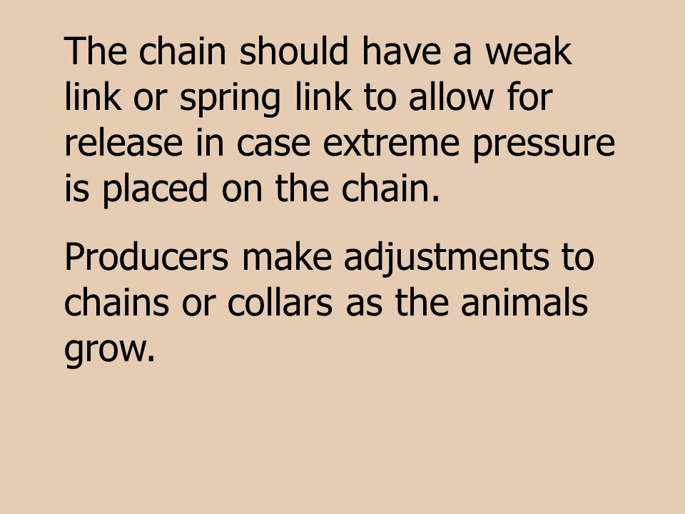 The chain should have a weak link or spring link to allow for release in case extreme pressure is placed on the chain.