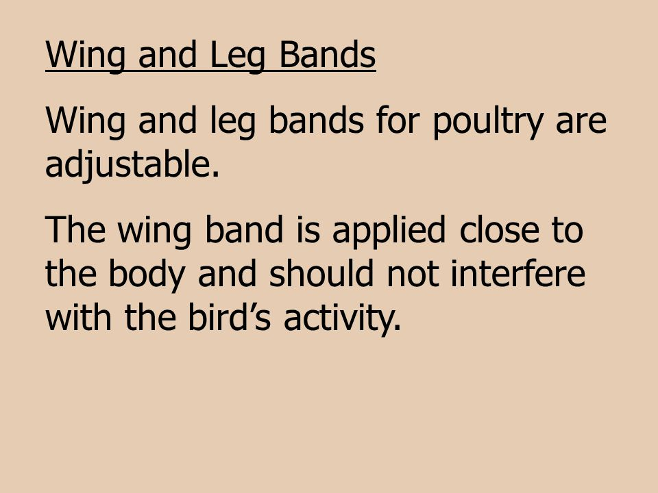 Wing and Leg Bands Wing and leg bands for poultry are adjustable.