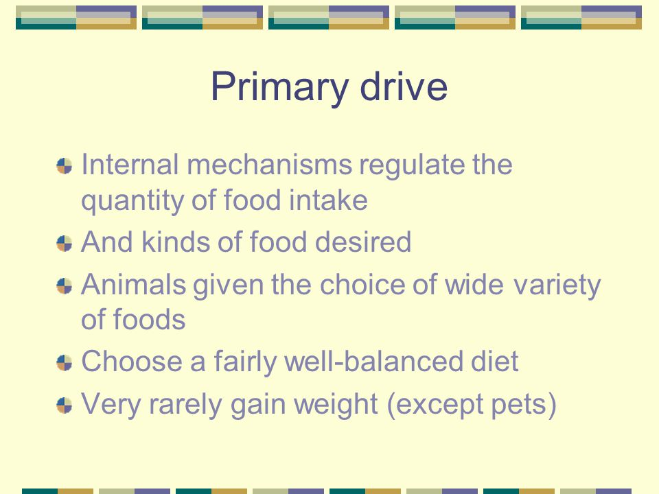 Primary drive Internal mechanisms regulate the quantity of food intake