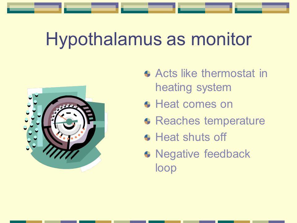 Hypothalamus as monitor