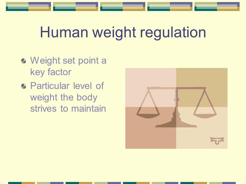 Human weight regulation