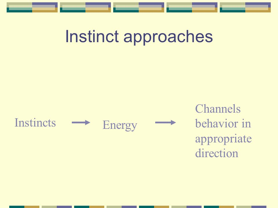 Instinct approaches Channels behavior in appropriate direction