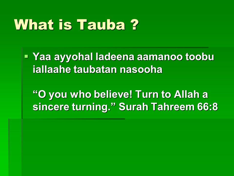 What is Tauba . Yaa ayyohal ladeena aamanoo toobu iallaahe taubatan nasooha O you who believe.