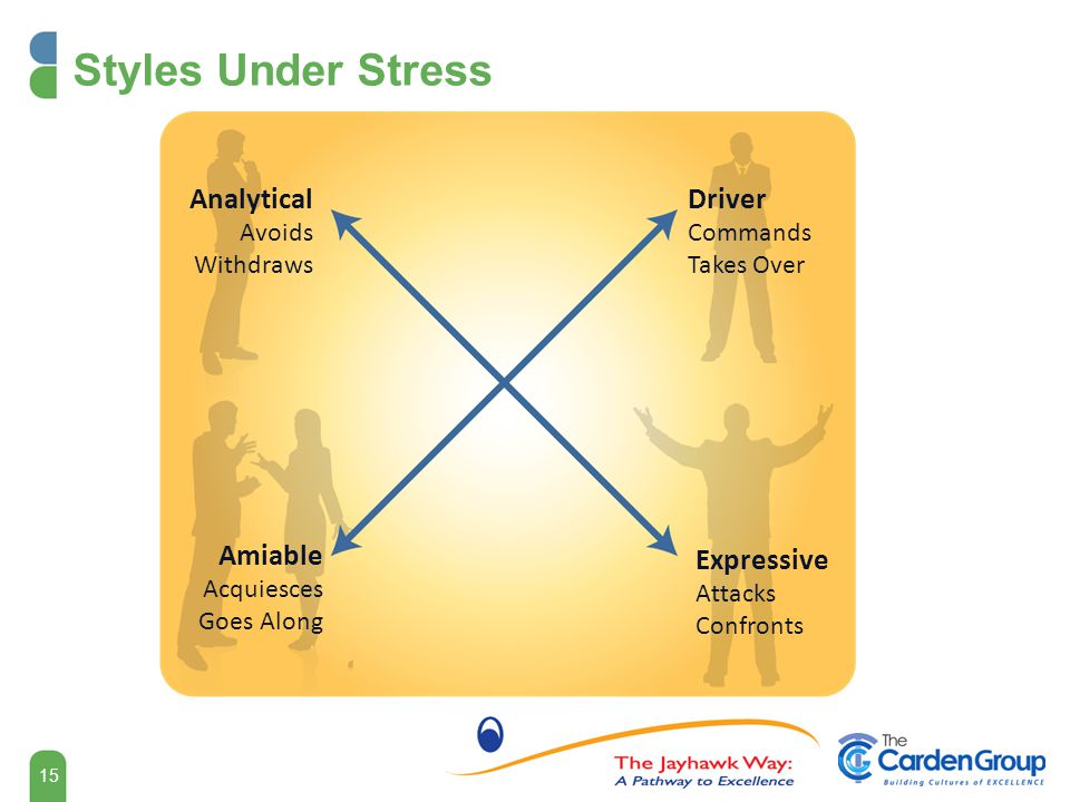 Styles Under Stress Analytical Driver Amiable Expressive Avoids