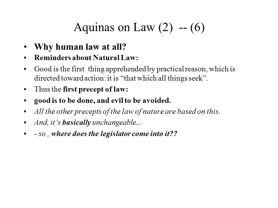 Aquinas on Law (2) -- (6) Why human law at all