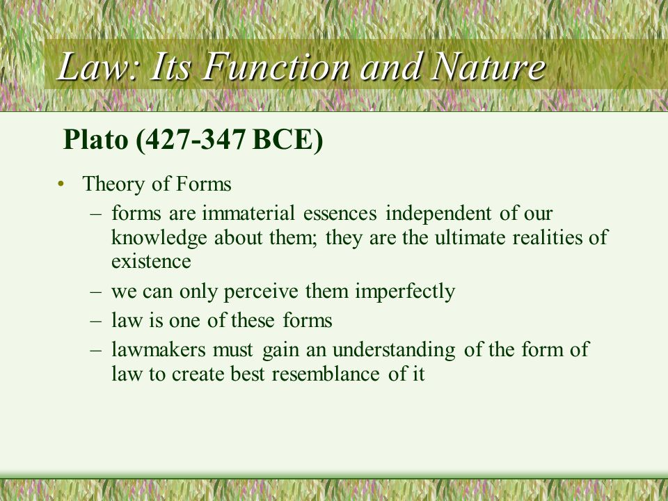 Law: Its Function and Nature
