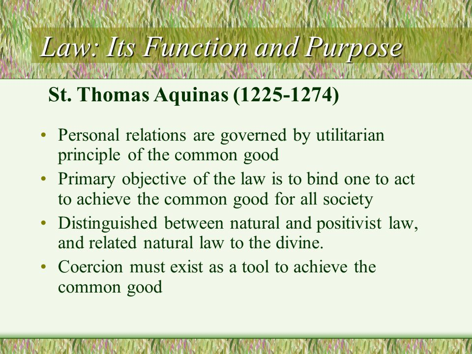 Law: Its Function and Purpose