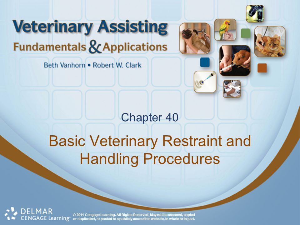 Basic Veterinary Restraint and Handling Procedures