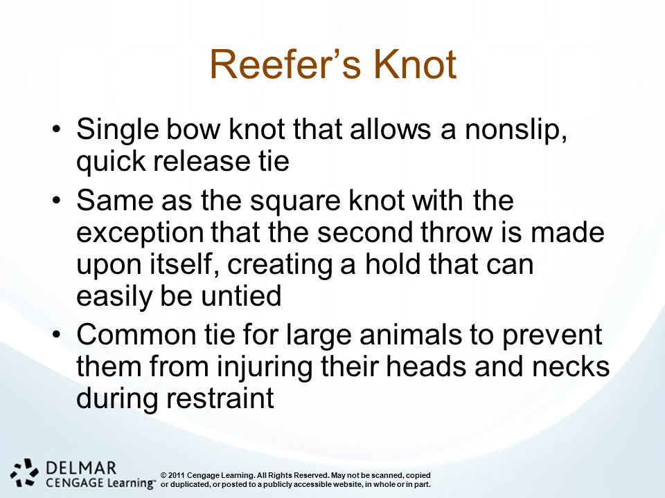 Reefer's Knot Single bow knot that allows a nonslip, quick release tie