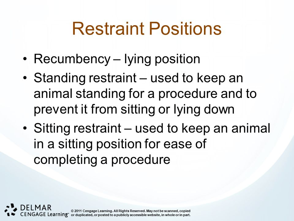 Restraint Positions Recumbency – lying position