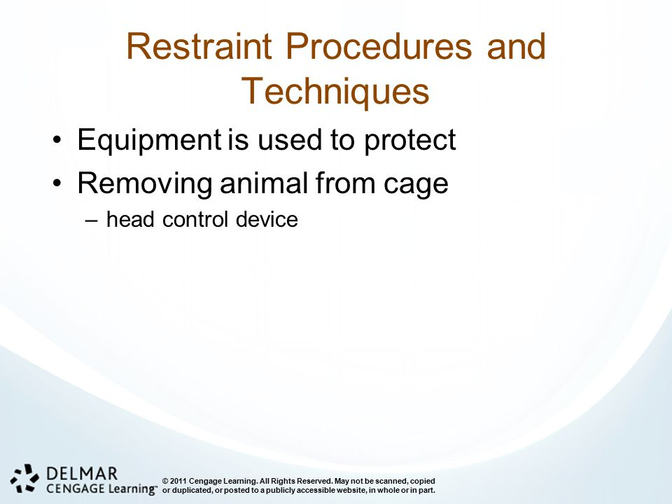 Restraint Procedures and Techniques