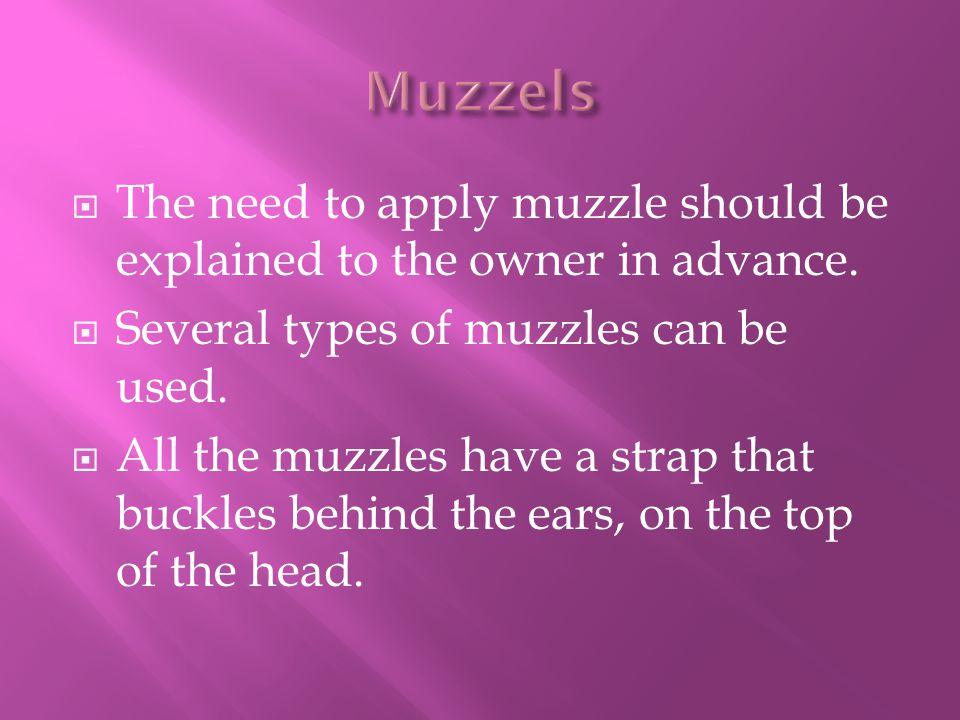 Muzzels The need to apply muzzle should be explained to the owner in advance. Several types of muzzles can be used.