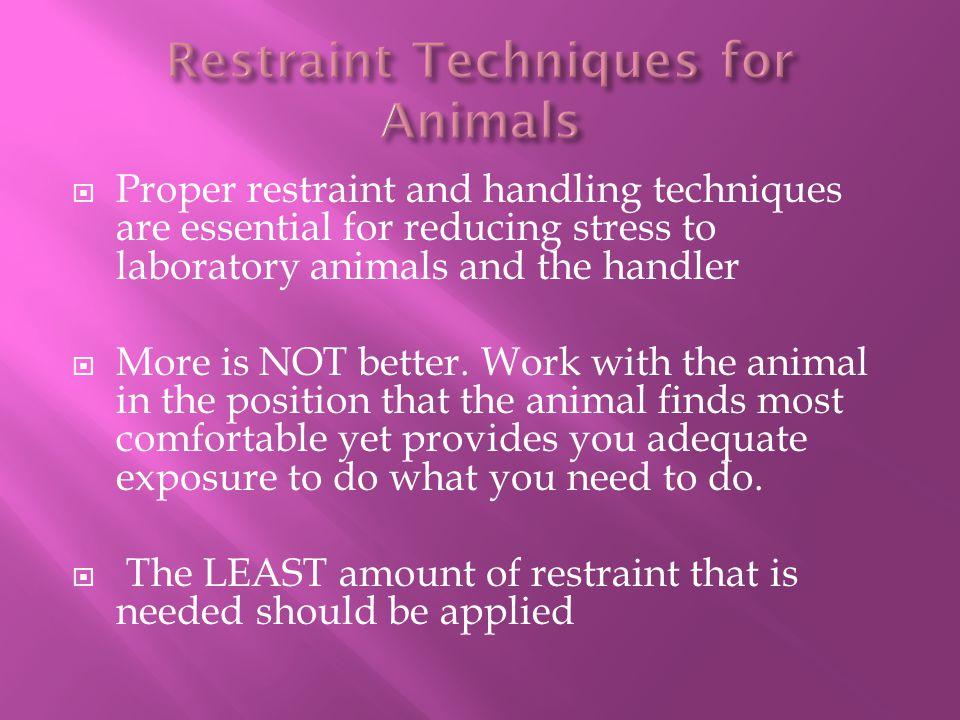 Restraint Techniques for Animals