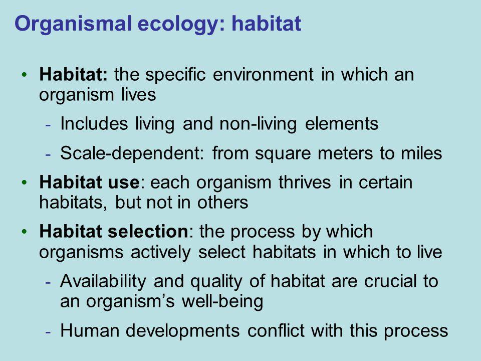 Organismal ecology: habitat