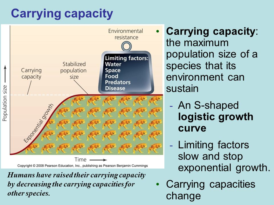 Carrying capacity Carrying capacity: the maximum population size of a species that its environment can sustain.