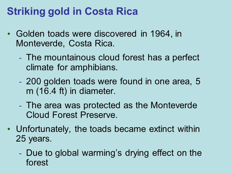 Striking gold in Costa Rica