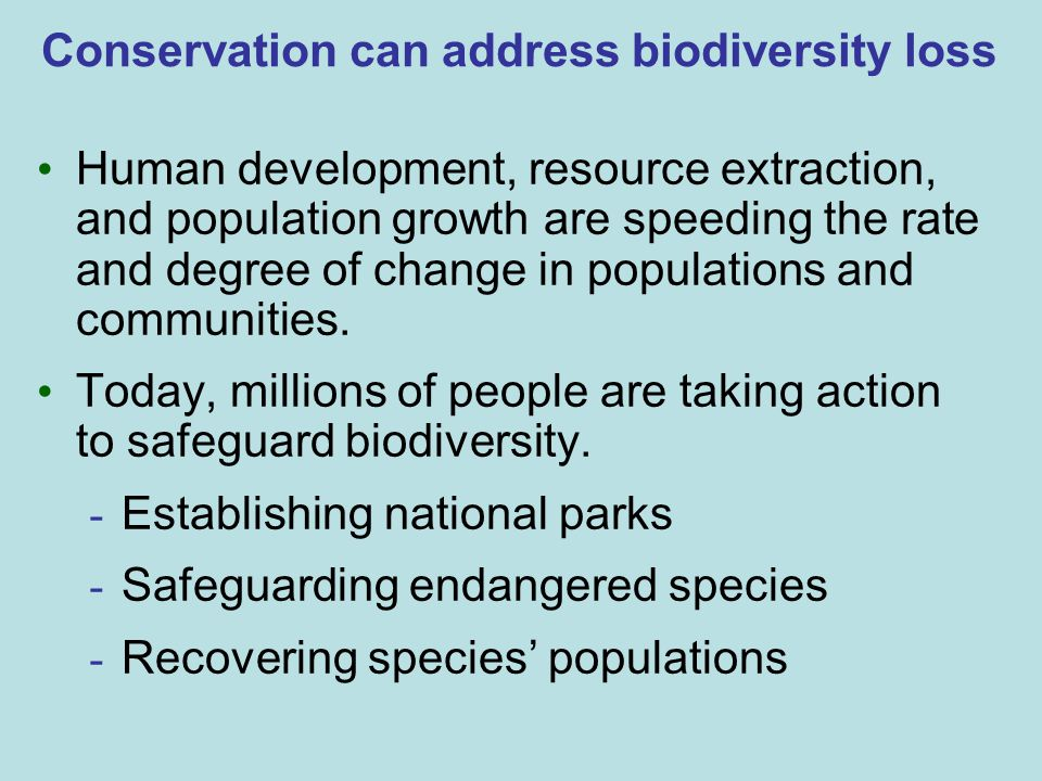 Conservation can address biodiversity loss