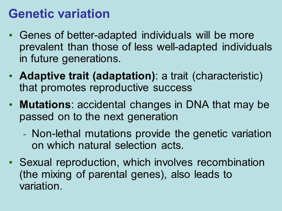 Genetic variation Genes of better-adapted individuals will be more prevalent than those of less well-adapted individuals in future generations.