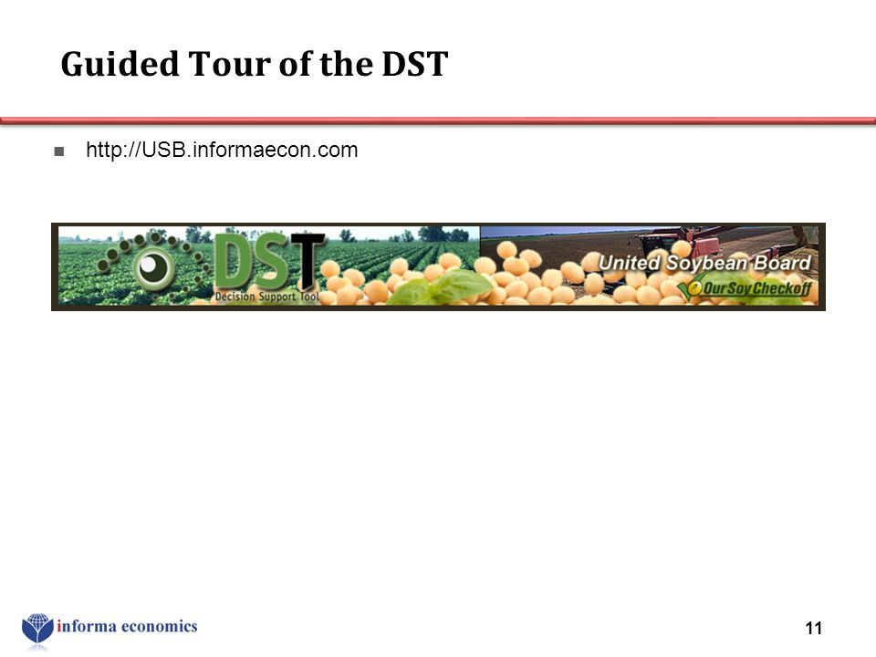Guided Tour of the DST http://USB.informaecon.com