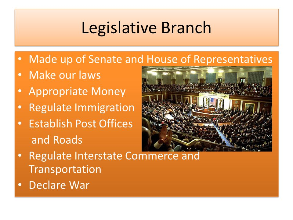 Legislative Branch Made up of Senate and House of Representatives