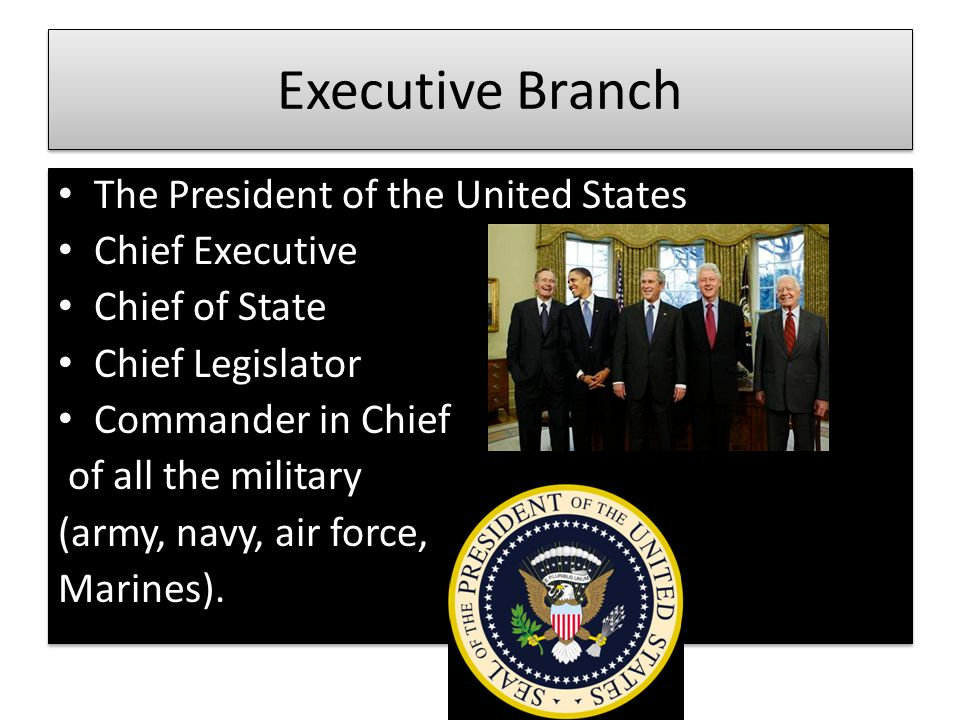 Executive Branch The President of the United States Chief Executive