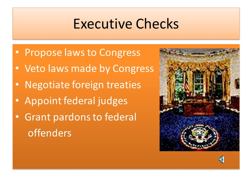 Executive Checks Propose laws to Congress Veto laws made by Congress
