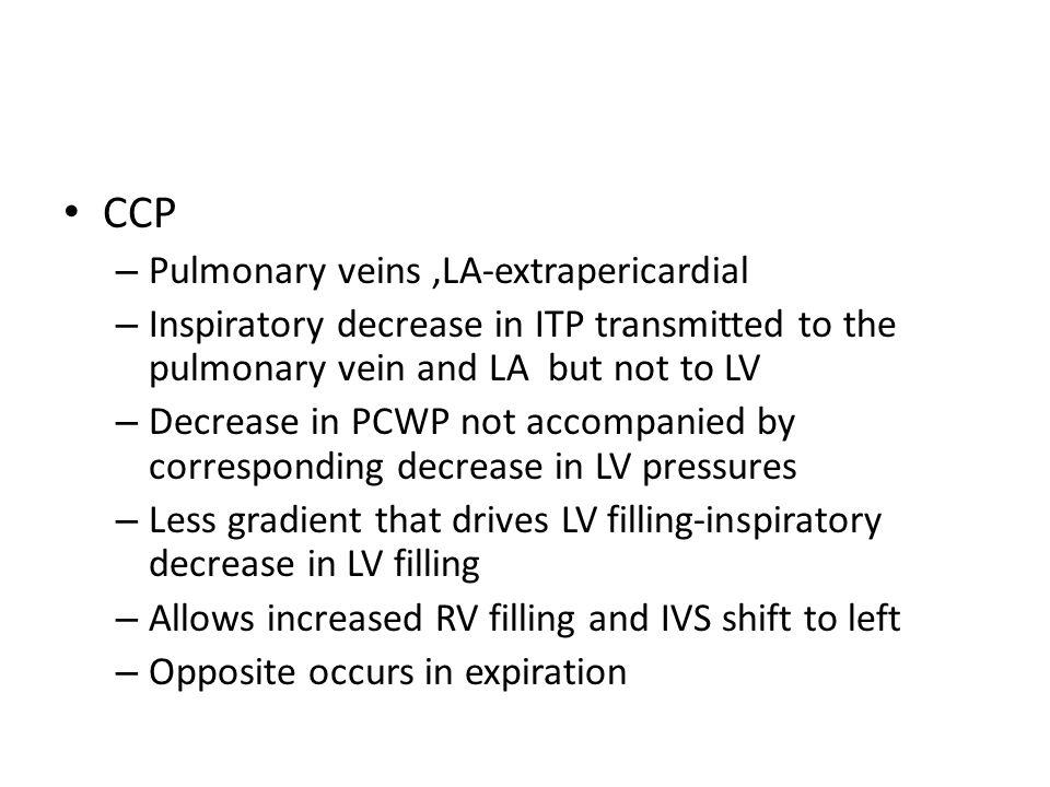 CCP Pulmonary veins ,LA-extrapericardial