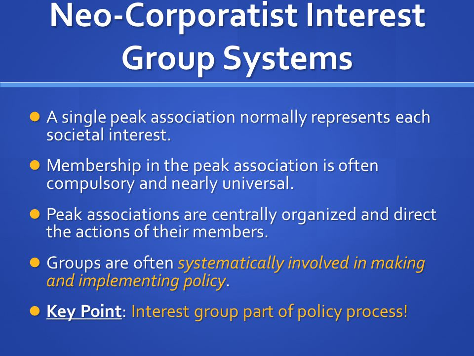 Neo-Corporatist Interest Group Systems