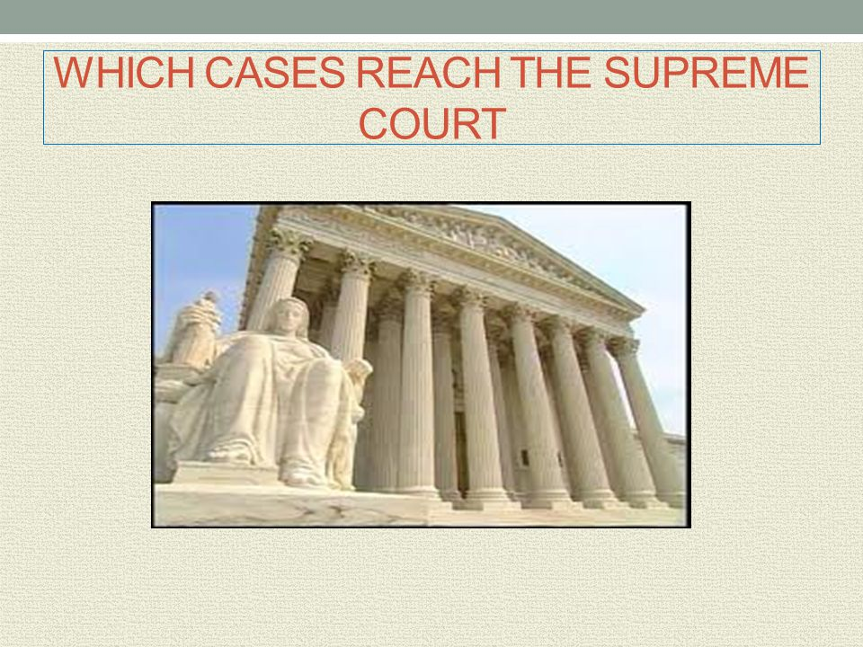 WHICH CASES REACH THE SUPREME COURT