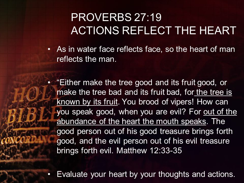 PROVERBS 27:19 ACTIONS REFLECT THE HEART
