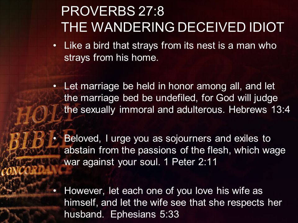 PROVERBS 27:8 THE WANDERING DECEIVED IDIOT