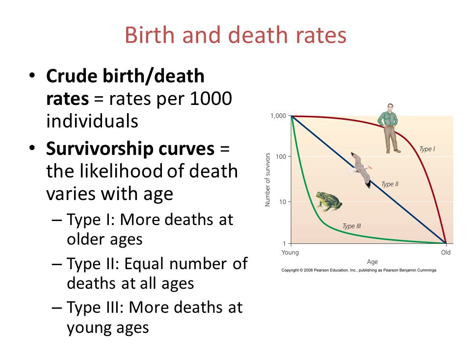 Birth and death rates Crude birth/death rates = rates per 1000 individuals. Survivorship curves = the likelihood of death varies with age.