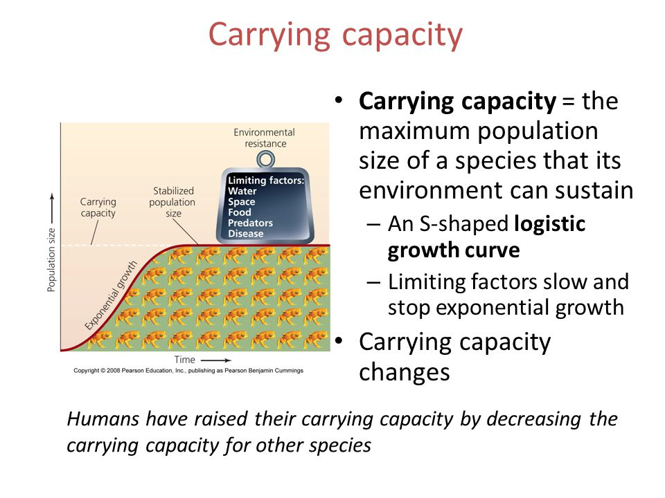 Carrying capacity Carrying capacity = the maximum population size of a species that its environment can sustain.