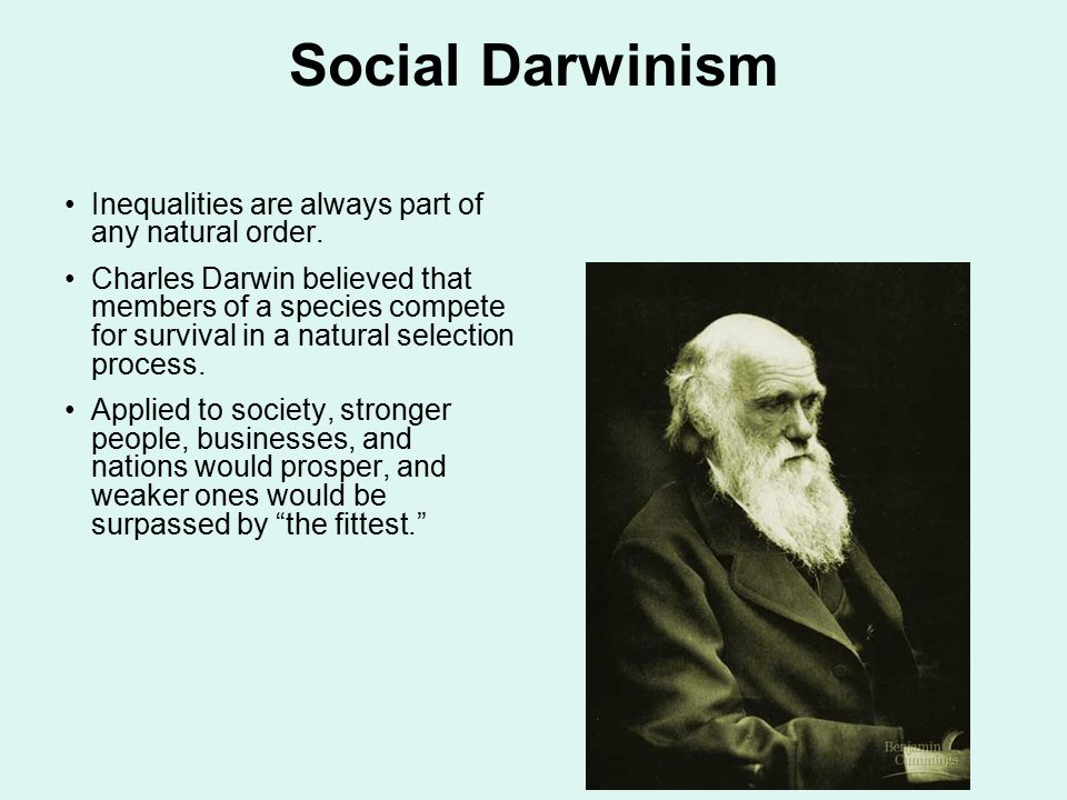 Social Darwinism Inequalities are always part of any natural order.