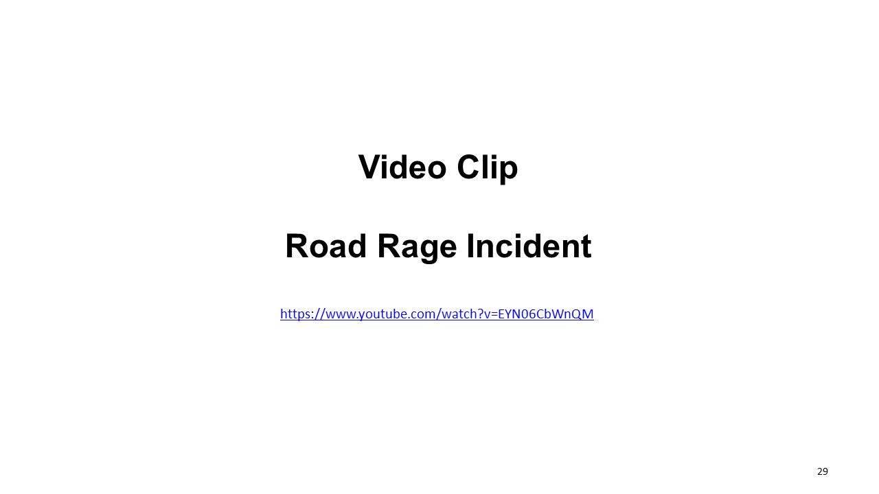 Video Clip Road Rage Incident