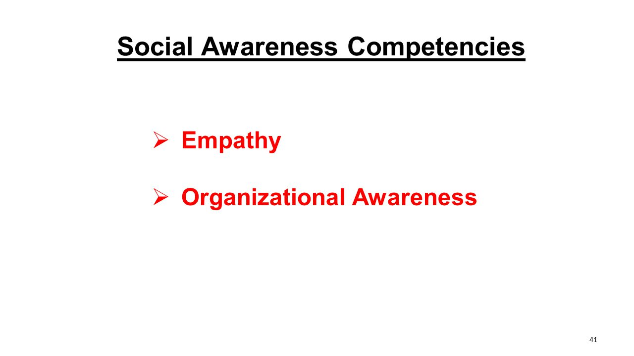Social Awareness Competencies