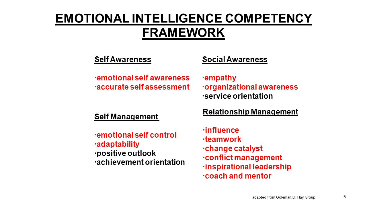 EMOTIONAL INTELLIGENCE COMPETENCY FRAMEWORK